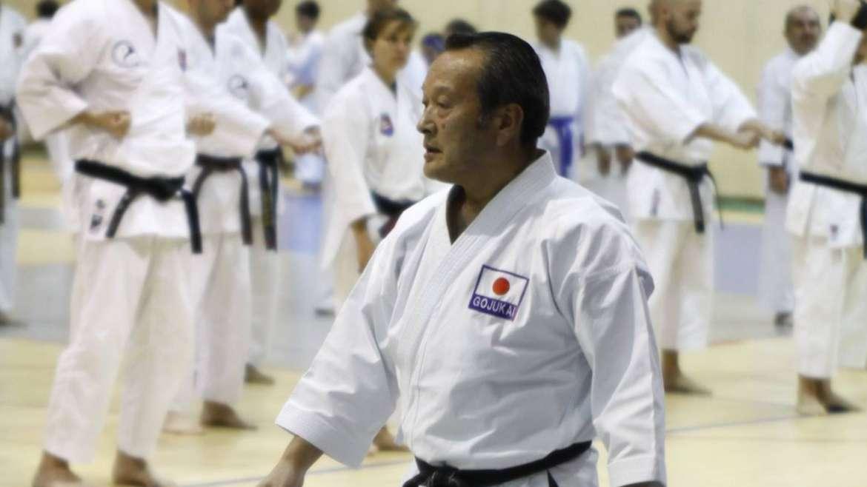Seiwakai Goju Ryu Karate seminar in Portugal