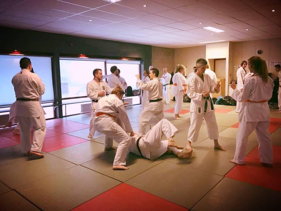 42171872 2036401449745089 2010306051877896192 n Technische Karate stage